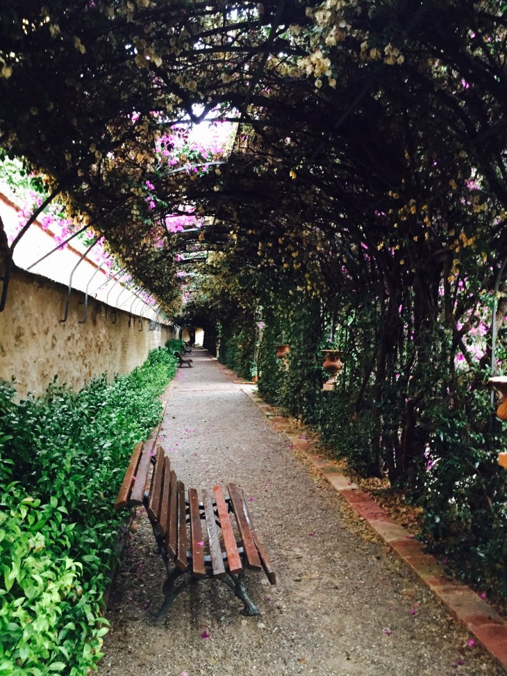 "The famous ""Love Tunnel"" at the back of the garden"