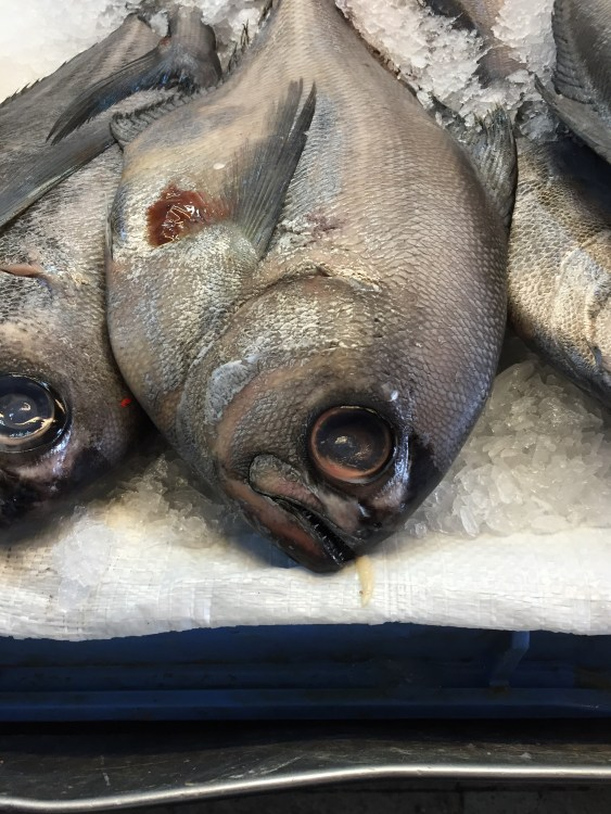 thefishmarket_bellasartes_nicolettejoakim_photo3
