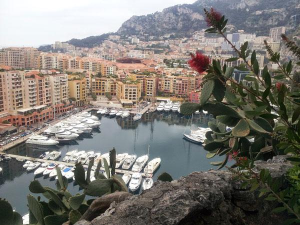 Boats docked in Monaco.