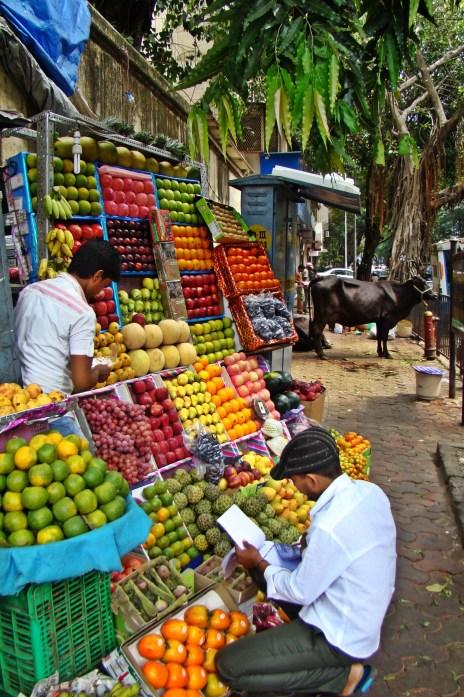 isa_study_abroad_hyderabad_india