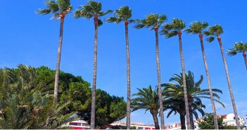 Stylight Cannes