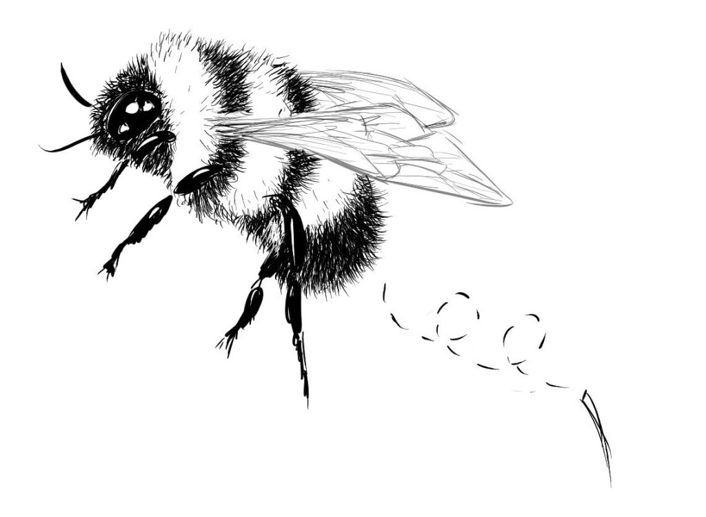 Bee with missing stinger