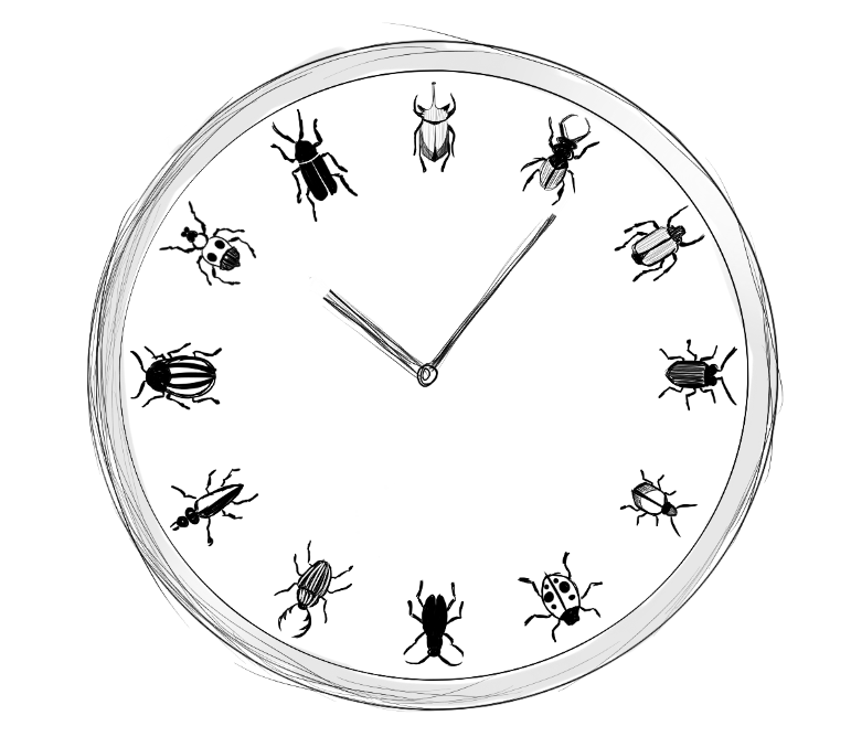 Clock_with_bugs_as_hour_markers