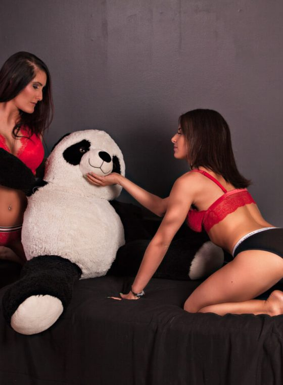 Tag Team Against Panda