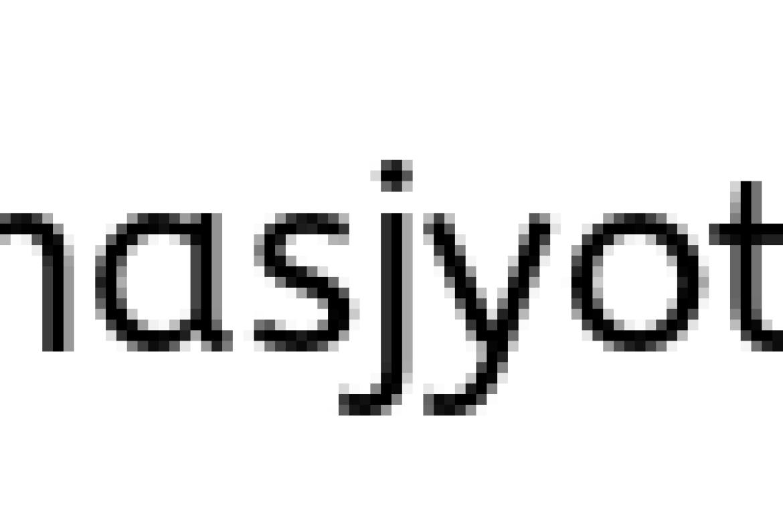 पितळी शिक्क्याचे सरदार (भाग २)