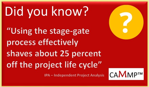 Stage-Gate Process, Project Management Methodology