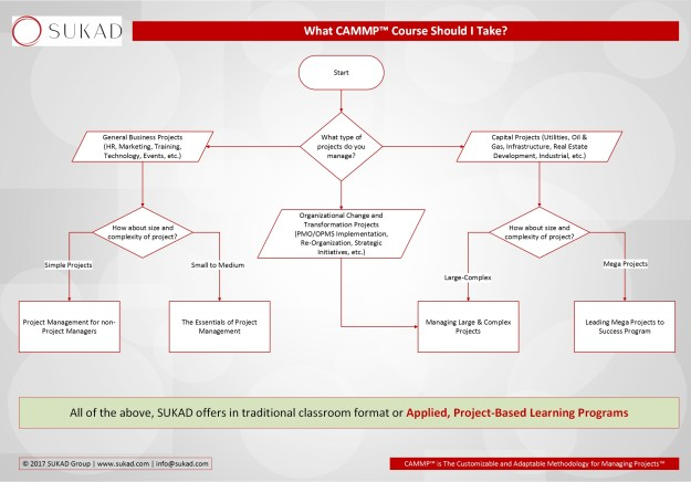 Deciding on CAMMP Workshop Flowchart
