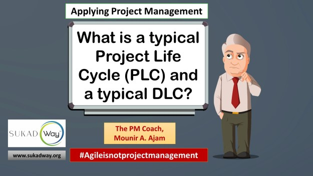 What is a project life cycle and how does it relate to a DLC?