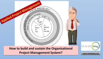 How to build the organizational project management system | Applied Project Management
