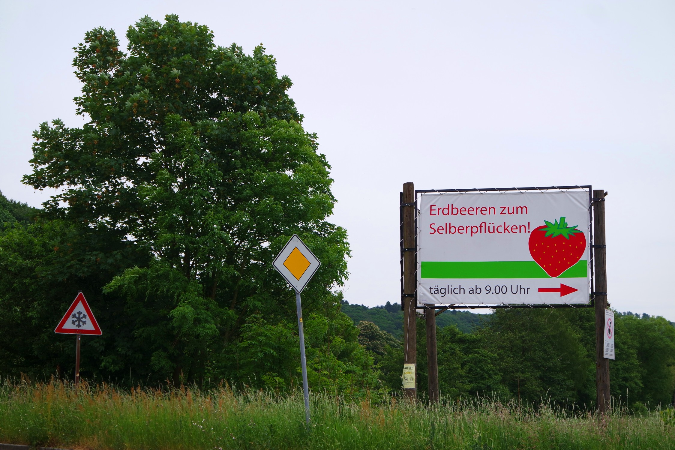 Erdbeertasche Schnittmuster | SULKY® Blog