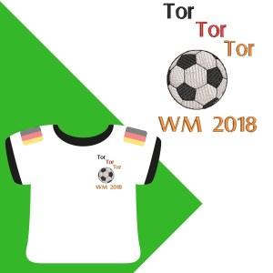 Fussball WM 2018 Artikelbild