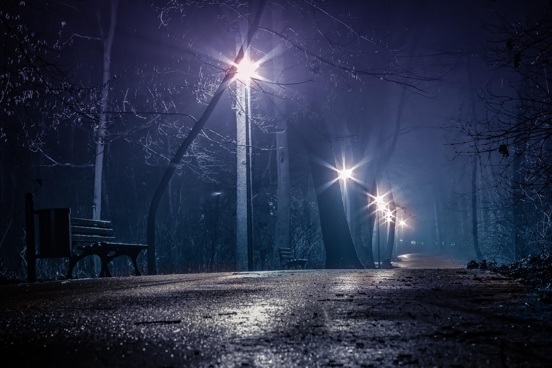 dark-park-3461023_1920.jpg