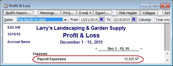 profit & loss payroll expenses