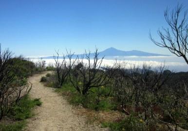 Blick vom Alto de Garajonay auf den Vulkan Teide (Teneriffa)
