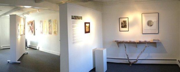Hemlock: The Backbone of the Catskills Exhibit
