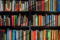 Books line a shelf of various sizes and colors