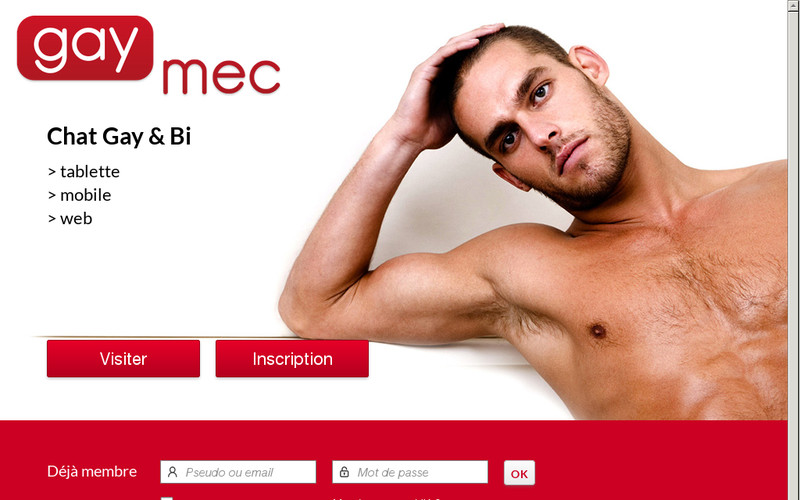 Avis sur GayMec