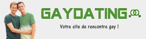Logo GayDating.top