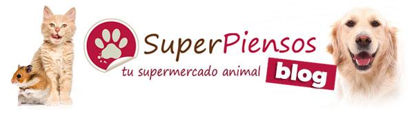 Superpiensos Blog