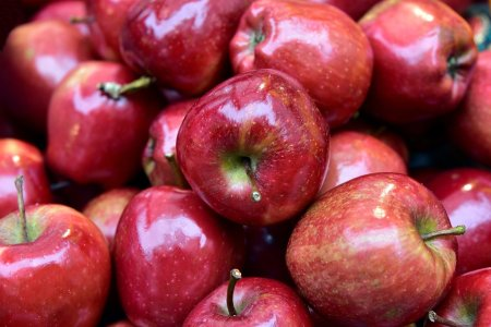 Guide to Cooking with Apples