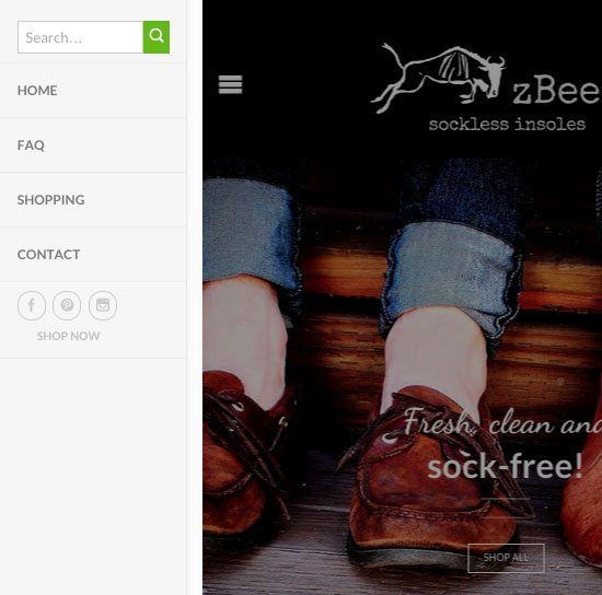 zBeest sockless shoe insoles ecommerce web design