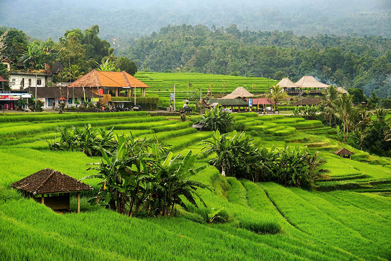 Bali Indonesia Travel photography