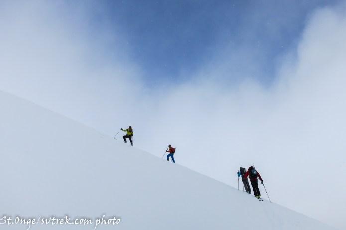 Into the Alpine