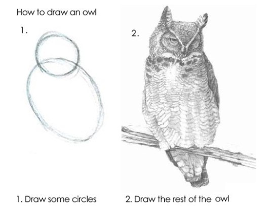 "A two step guide to drawing an owl. The first step is drawing circles for the head and body, the second is just ""draw the rest of the owl"""