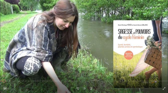 Une interview de Sarah-Maria Leblanc, herboriste clinicienne, co-auteure de Sagesse et pouvoirs du cycle féminin (Le Souffle d'Or, 2014).