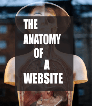 The Anatomy Of A Website