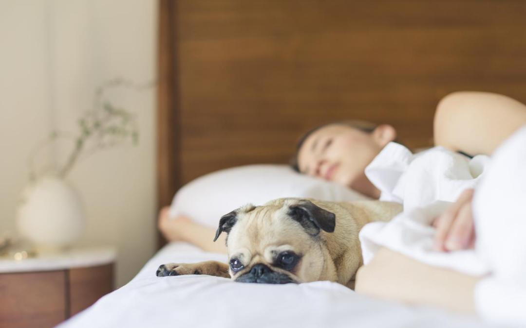 Sufficient sleep adds to a better quality of life