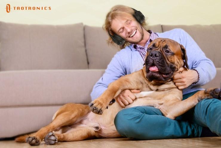 Understand Your Dog