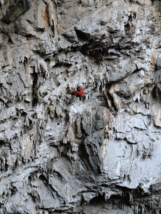 Jaguar (13a). Interior de la Cueva. Foto: Margarita Cardoso