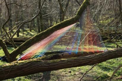 rainbow-forest-4-412x274