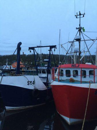 Ships in Scottish Harbor