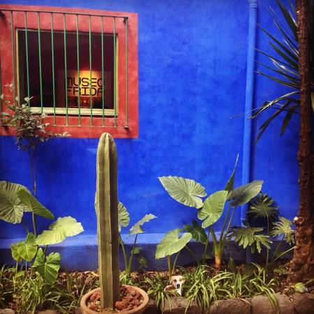 Tea Travels Mexico City