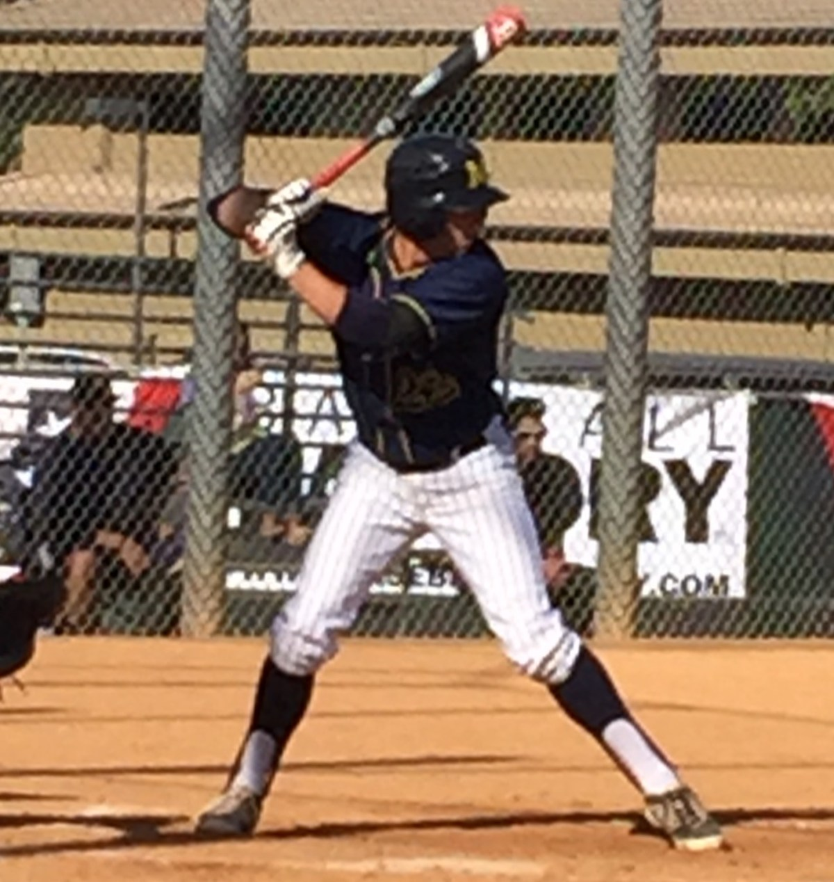 2016 SS Spencer Steer (Long Beach Millikan HS)