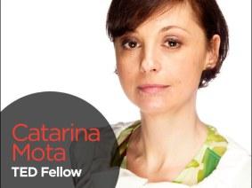 Tinker, tailor, solderer: Fellows Friday with Catarina Mota