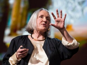 Can a city be too technological? Saskia Sassen at TED2013