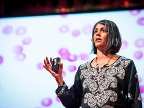 Why haven't we gotten rid of malaria? Sonia Shah at TEDGlobal 2013