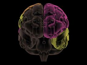 What are mirror neurons? Further reading on the neurotherapy described in today's talk