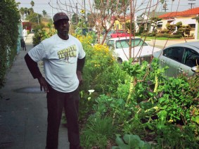 No more citations for curbside veggies in Los Angeles