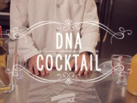 Exclusive video: How to make a cocktail from strawberry DNA