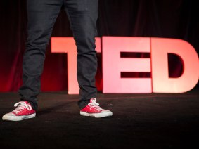 The 20 most popular TED Talks, as of December 2013