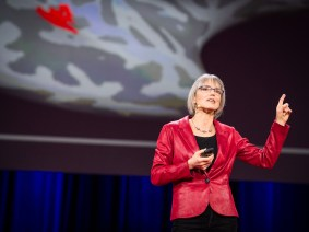The brain is a Swiss Army knife: Nancy Kanwisher at TED2014