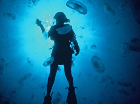 What's it like to be a deep sea explorer? Highlights from a Q&A with Sylvia Earle