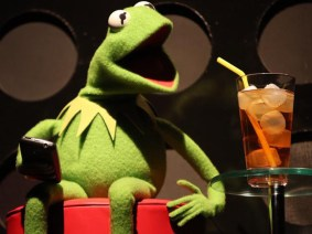 Kermit the Frog gives a TEDx Talk, and Twitter loves it