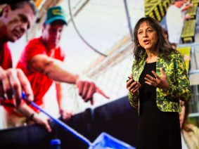 When the audience takes the stage: The personal talks of TED University at TED2016