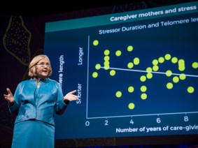 The puzzle of aging: Elizabeth Blackburn speaks at TED2017