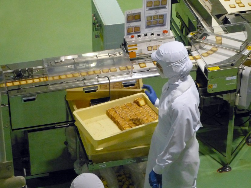 A worker in a food production facility.